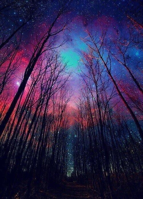 RT @ThatsEarth: #12 A winter midnight sky http://t.co/87l14MydcL