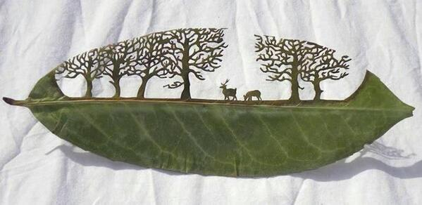 Amazing leaf carving... http://t.co/HWD7y7AmuF