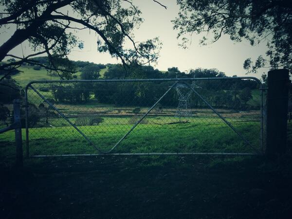 Gate. #tweetedfarmwalk @zoerose22 @BearishClaire @LynDavey http://t.co/zXzPiibyMg