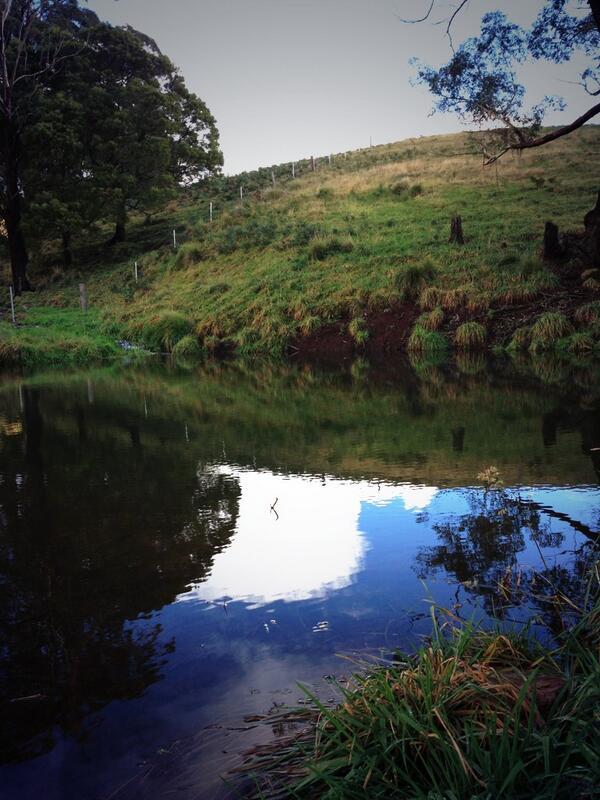 Reflections. #tweetedfarmwalk @zoerose22 http://t.co/vXT1YvQt4w