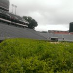 RT @BarrettSallee: Good morning from Sanford Stadium. http://t.co/ulZszsvkZ2