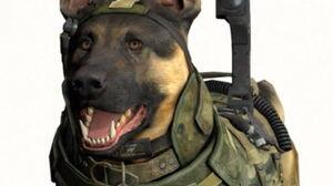"""Call of Duty: Ghost's: Infinity Ward are """"""""divided"""""""" over killing Riley the dog http://t.co/tjnFdLPgUW"""