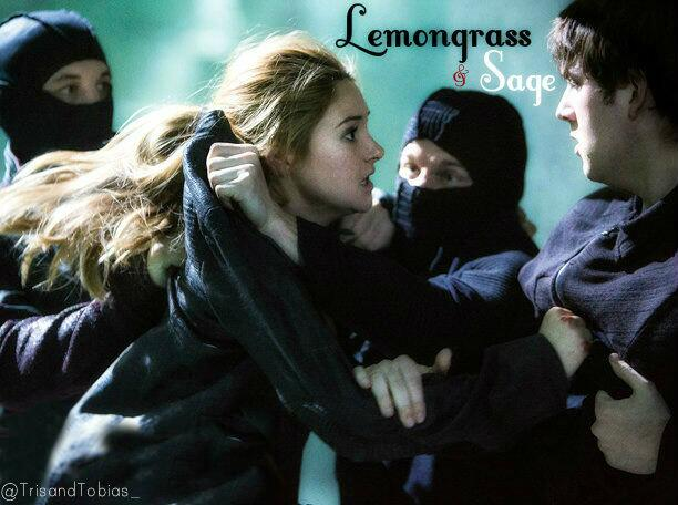 'The smell is Familiar. Lemongrass and Sage. The same smell surrounds Al's bunk.' #Divergent http://t.co/4UfTTwAe14