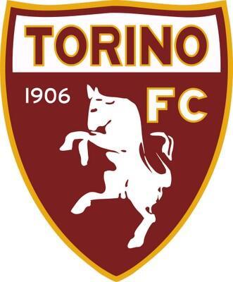 Torino F.C. http://t.co/Mlm9md4oMI
