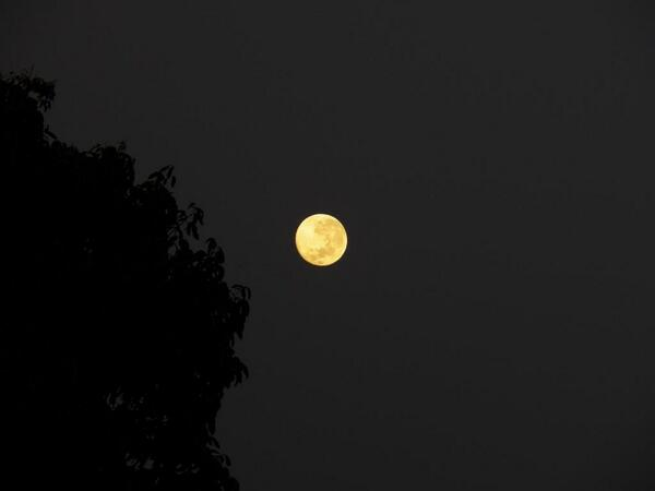 RT @jmarquezm La Luna por la mañana.. http://t.co/ydxGSNViKh