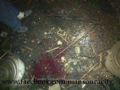RT @just_me_didi: #المنصورة  RT @jejemohamed4: @just_me_didi @AMelShahat الصوره دى من مكان الحادث ا لان http://t.co/vVvE7dZoeL
