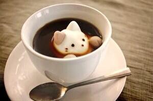 향기로운 오후 되세요~ RT @joypoodle: 夜のコーヒータイムにゃ☆彡 http://t.co/35WggEJ8uO