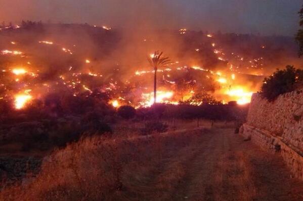 Juanjo fraile (@Juanjofraile): Lo que está destrozando el fuego... Encoje el alma! #incendio  #Mallorca http://t.co/rwDOTGG0gu