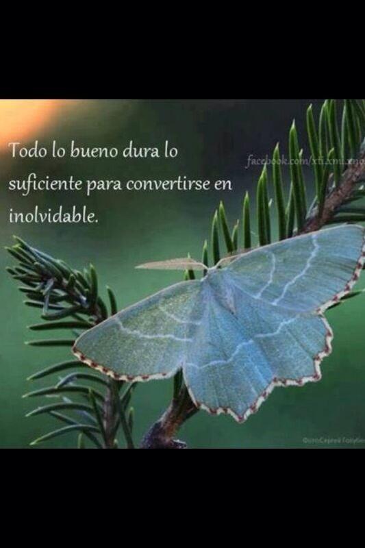 Mar Montoro (@Mar_Montoro): Como hoy es un día muy especial para mi,os paso esta reflexión!! http://t.co/MMdNTBjA1l