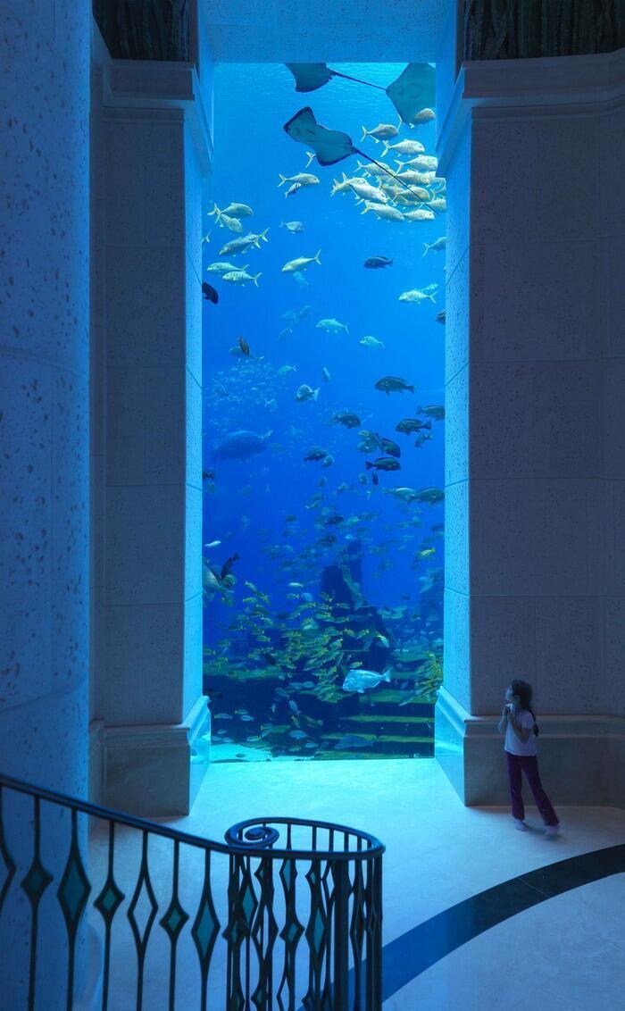 Underwater hotel in Dubai. http://t.co/ZbkzNu1fvC