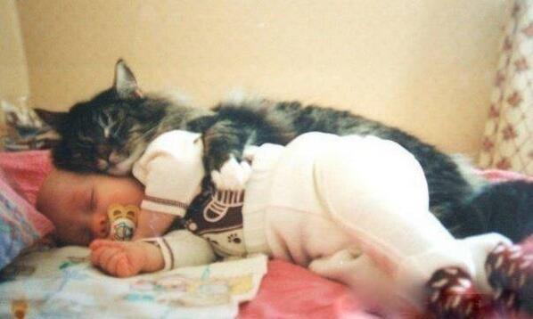 Saldus sapņus-tiem,kas gulēt! http://t.co/HFAi0Ovb7N