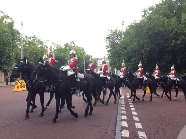 Police on the look out for the white horse have located a number of black horses http://t.co/BKKOGX1Tpn