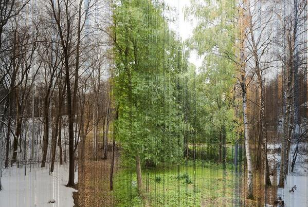 A picture in 365 slices - Each is one day of the year. http://t.co/RFDPIMwBKs