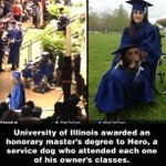 RT @WhatTheFFacts: This dog was awarded an honorary master's degree...!