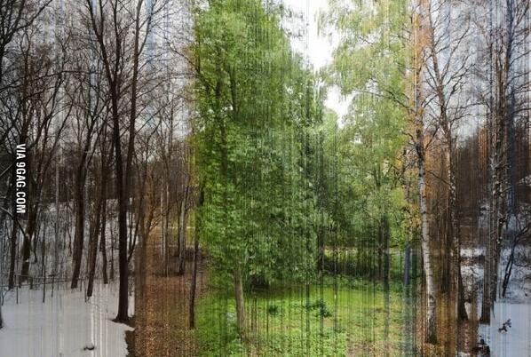 A picture in 365 slices. Each is one day of the year! http://t.co/AYFMWbZ7zi
