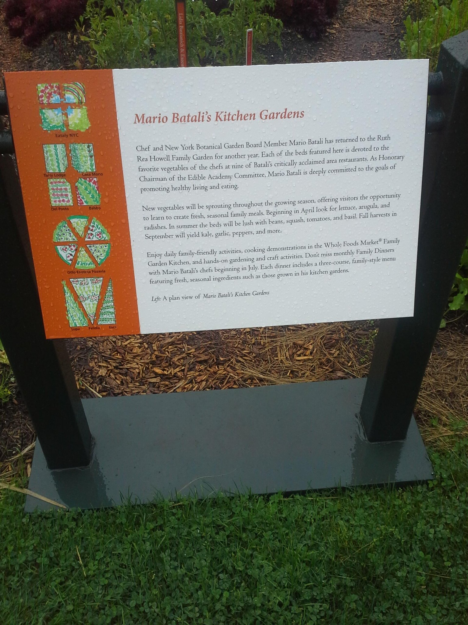 Summer is winding down but the kitchen gardens are in full swing! Come out and see !!!  @nybg http://t.co/ZuoK2aR8Gm
