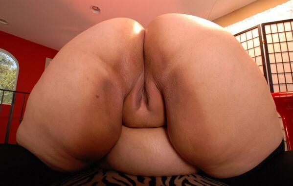 порно фото толстых жоп с влагалищями