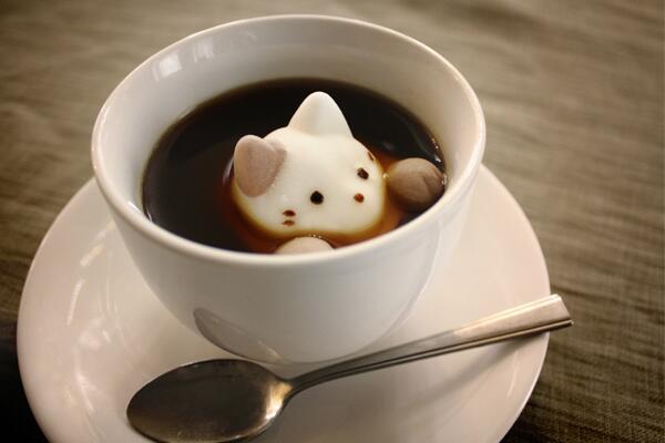 可愛いネコがちょこんと顔出す姿…こりゃたまらん~(〃∇〃)!! コーヒーに浮かべるネコのマシュマロ♡HPからも購入可能のようです!≪マシュマロ専門店やわはだ≫ http://t.co/uzr0CNP2rf (みっかぱん) http://t.co/qByVOJPDt2