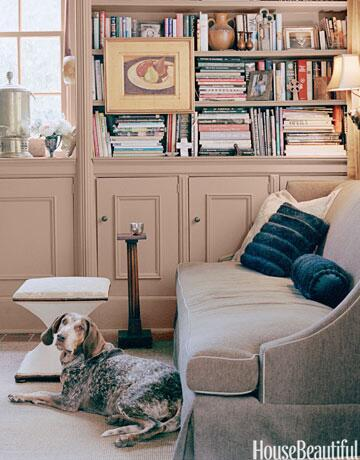 Agnes, a pointer mix, claims her place in Richard Norris and Mark Leslie's old Southern home. #nationaldogday http://t.co/YRlgNsAZTs