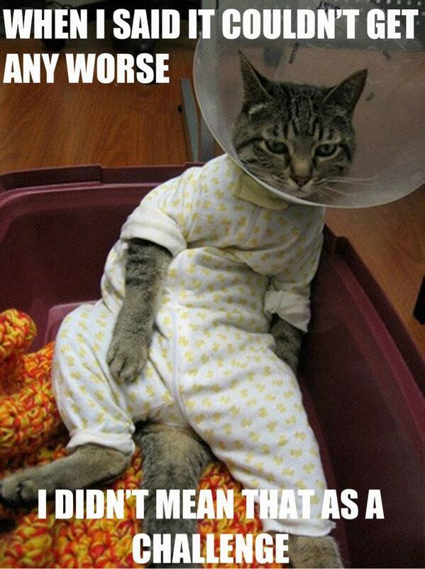 Morning funny!!! http://t.co/W8fSo5JlMv