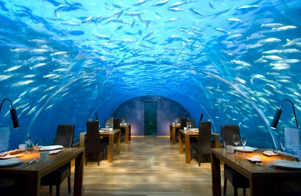 Ithaa, the Underwater Restaurant in the Maldives http://t.co/tDYzLZYh1y
