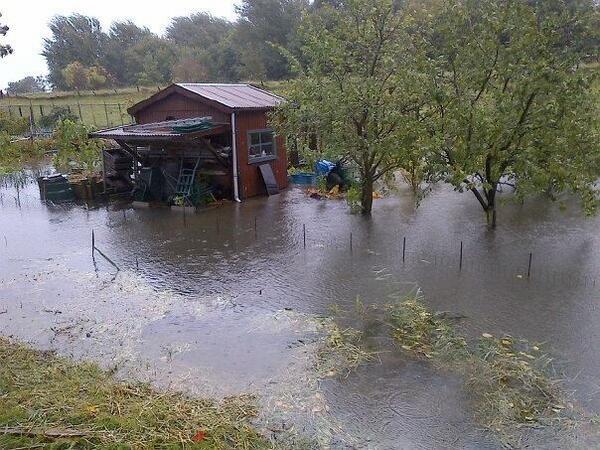 Ook #wateroverlast in de Oosterse Gorzenwijk, Oud-Beijerland http://t.co/QBmzswFDBe