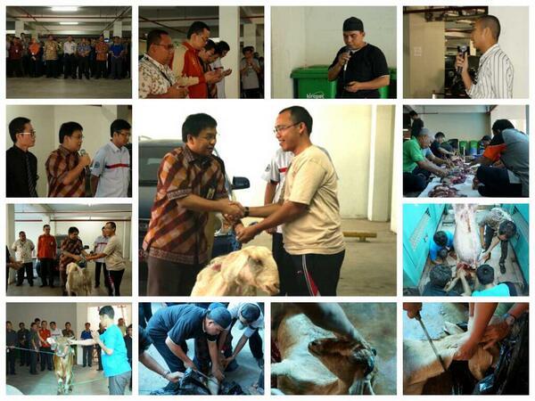 Penyembelihan hewan qurban Hari Raya Idul Adha 1434 H Kanwil DJP Kalselteng ^_^ @mekars @DitjenPajakRI @PajakMania http://t.co/99b1oEDeL5