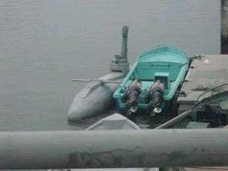 Trabajo de la  Armada permite interceptar semi sumergible presuntamente en acto ilícito en Esmeraldas http://t.co/CkAaopTaSV