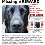 PLEASE RT @AlfieBlack has been #Missing from #CoventGarden for over 2 Years. Please Help get Him #Home to #London http://t.co/eMP5pKC1g3