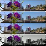 RT @dalydose: Only w/ @nokia #Refocus app, could I get all of these images from 1 shot! #WP8 #WinPhan http://t.co/jubfZu4eyy
