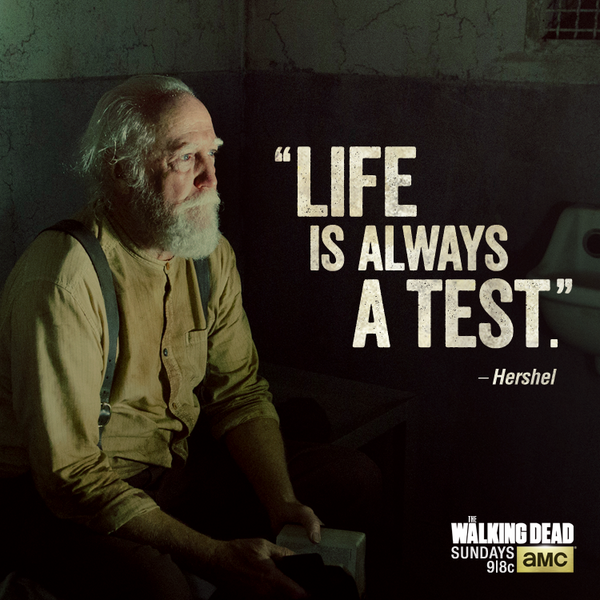 #TheWalkingDead http://t.co/rmvqjXLdaB
