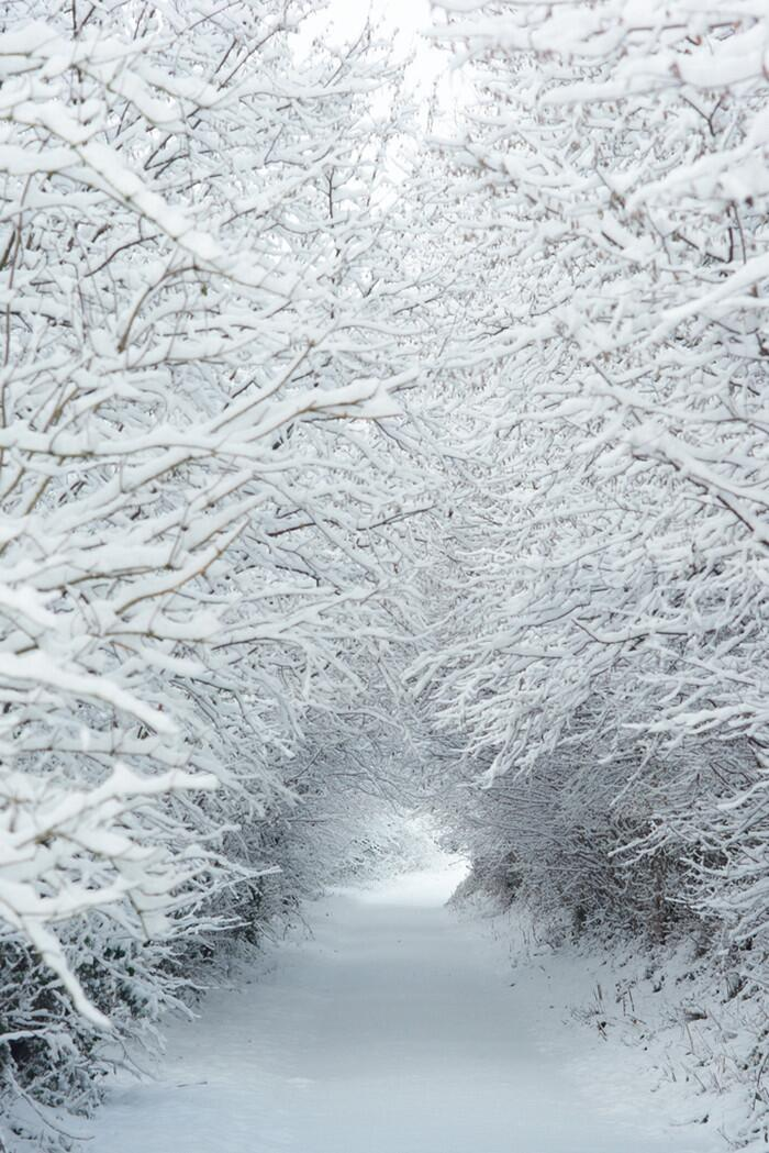 Snow Tunnel http://t.co/vlEfQPwkfh