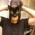 "RT @tonythaxton: THIS MIGHT BE THE BEST TWEET EVER. ""@Damientg: How to look like Batman, using your cat. http://t.co/zMbop6pOqb"""