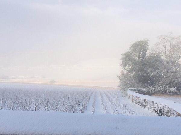 Jeremy Seysses (@JeremySeysses): Winter makes its official arrival to Burgundy. http://t.co/jK5rjuxkrN
