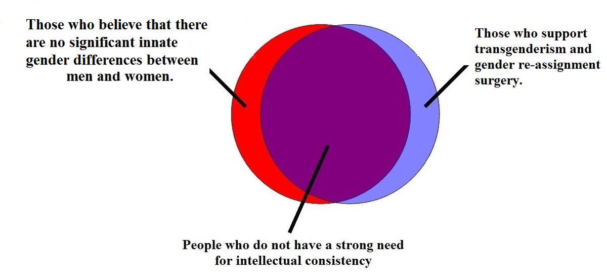 Venn diagram are there innate gender differences if not why is venn diagram are there innate gender differences if not why is there a ccuart Image collections