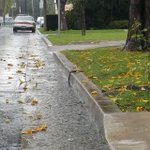This picture is beautiful to me ;-; RT @NBCLA: UPDATE: Hail and thunder reported as #larain falls #TrackingtheStorm http://t.co/oT5FblsVdt