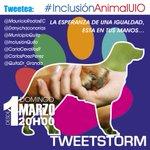 @CarlaCevallosR @CarlosPaezPerez @QuitoDr_Granda #Quito #InclusionAnimalUIO Por y para los animales ORDENANZA YA http://t.co/RLdrQP2QKx