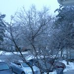 @gwenfox5dc icy trees and icy roads http://t.co/s3v6H7E5s4