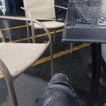 Wet chair. Dont care. http://t.co/IOGTtCklO4