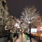 Ice in DC making for slippery sidewalks and gorgeous trees @ Pennsylvania & 17th http://t.co/S2T0pvSaKg