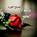 @alfadguc صباح الورد💐 http://t.co/UasMKmXckC