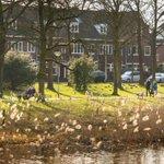 De lente komt er weer aan! Bekijk de eerste fotos van de lente in het Sonsbeeckpark. Meer: http://t.co/5FsXZa98Vu http://t.co/2o5QIfiEm9