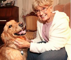 #Dog saves #elderly owner from #carbonmonoxide leak! http://t.co/tCzXEGDYiV #GoldenRetriever #Dog #CanineHero http://t.co/bj3pBCNgEa