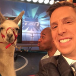 The asking price for two rental llamas is very high on deadline day. http://t.co/HdcFJpsNPM http://t.co/IqUNqa8ocB