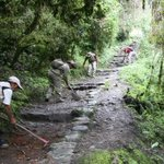 Camino inca hacia Machu Picchu luce así tras mantenimiento #FOTO http://t.co/FEWZioG6z0 http://t.co/dhreWFsN8r