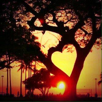اسيرالحب الحزين http://t.co/finCCpmaLm
