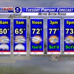 #BatonRouge: mild, muggy Tuesday AM with DENSE FOG .. then sctd afternoon showers with highs in the 70°s. #GoBR http://t.co/AjupR2VyQb
