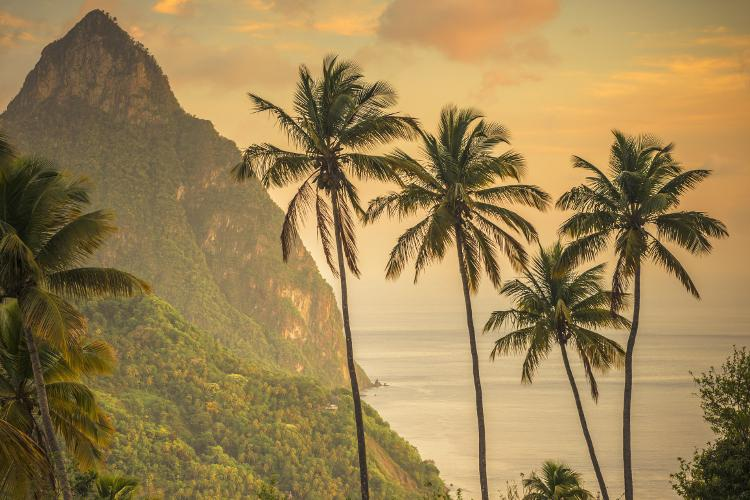 Top 10 St. Lucia experiences: