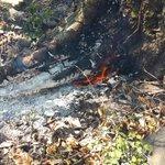 Incendio forestal Volcán Chichontepec ha consumido al menos 65 manzanas de terreno, bomberos en zona vía @alfredoroar http://t.co/IZpYOvlnlG