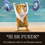 PARECE FACIL PERO SOLO TENEIS Q HACER LO Q LLEVAIS HACIENDO TODA LA TEMPORADA #VamosAvenida @AlMiranda77 @avelinogar http://t.co/Ie1acQ8NrK